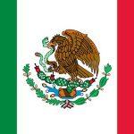 メキシコで9才の少女が帝王切開