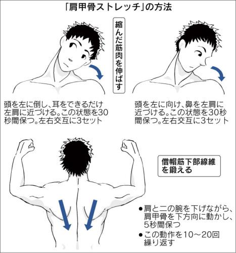 肩甲骨ストレッチの方法