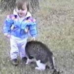 猫のスリスリが強烈過ぎて、赤ちゃんよろよろ