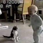赤ちゃんと猫のプロレス。ネコがアグレッシブすぎる