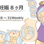 妊娠8ヶ月。妊娠線は女の勲章