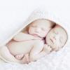 数字が語る妊娠。赤ちゃんのできる確率は25%