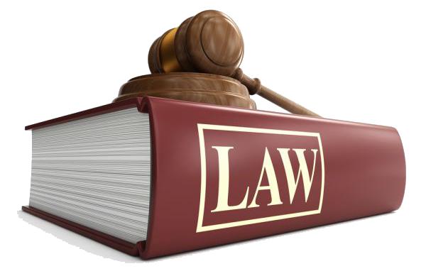 妊娠・出産・育児にかかわる法律